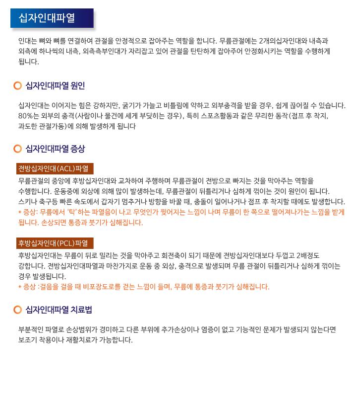 무릎질환_십자인대파열.jpg